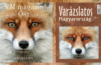 Intézetünk munkatársának cikke a Varázslatos Magyarország őszi számában